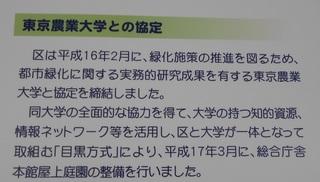 目黒区役所屋上庭園 (6).JPG
